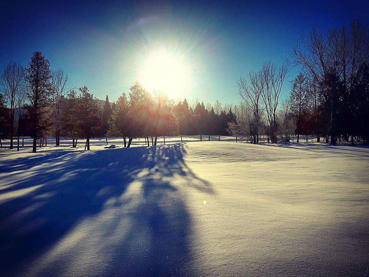 Wake up sunshine Winter Snow Cold Temperature Tree Sky Outdoors No People Day Nature Eyemphotography Earth Contryside Contry Livin Sunrise Sunlight Sunrise - Dawn Landscape_photography Landscape Eyemnaturelovers Sunphotography Sun Beauty In Nature Wintertime Winter Winter Landscape