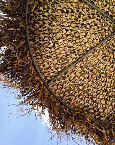 Summer Summertime Sea And Sky Sea Relaxing EyeEm IPhoneography Beach Life Sun Umbrella Handmade Handmade Thatched Umbrella Thatched Roof Thatched Sun Shades Thatched Umbrella