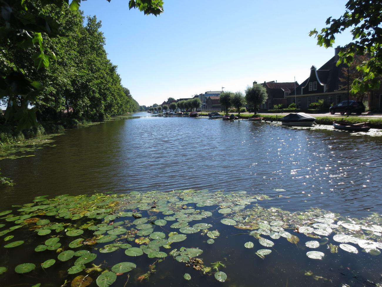 Unas Vistas del Rio que pasa por el Pueblo de Edan en Holanda