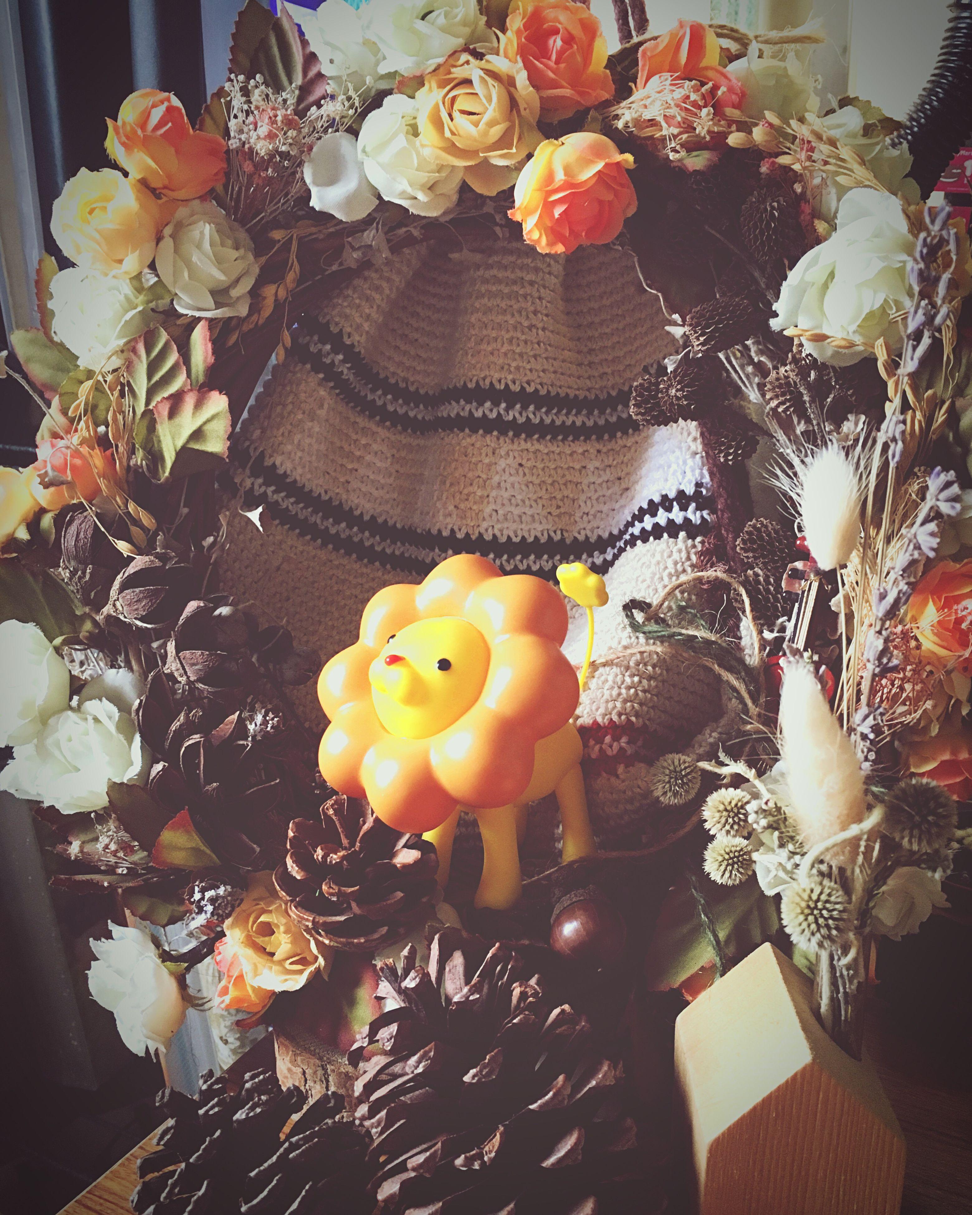 decoration, flower, celebration, decor, variation, still life, no people, close-up, multi colored, fragility, illuminated, petal, electric lamp, arrangement
