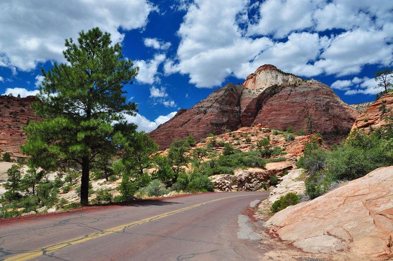 Einsame Straße im Zion National Park, Utah, USA Amerika Berge Bergig Bäume Felsen Highway Landschaft Landstrasse Nationalpark Nordamerika Road Schlucht Straße USA Utah Vereinigte Staaten Wildnis Zion National Park