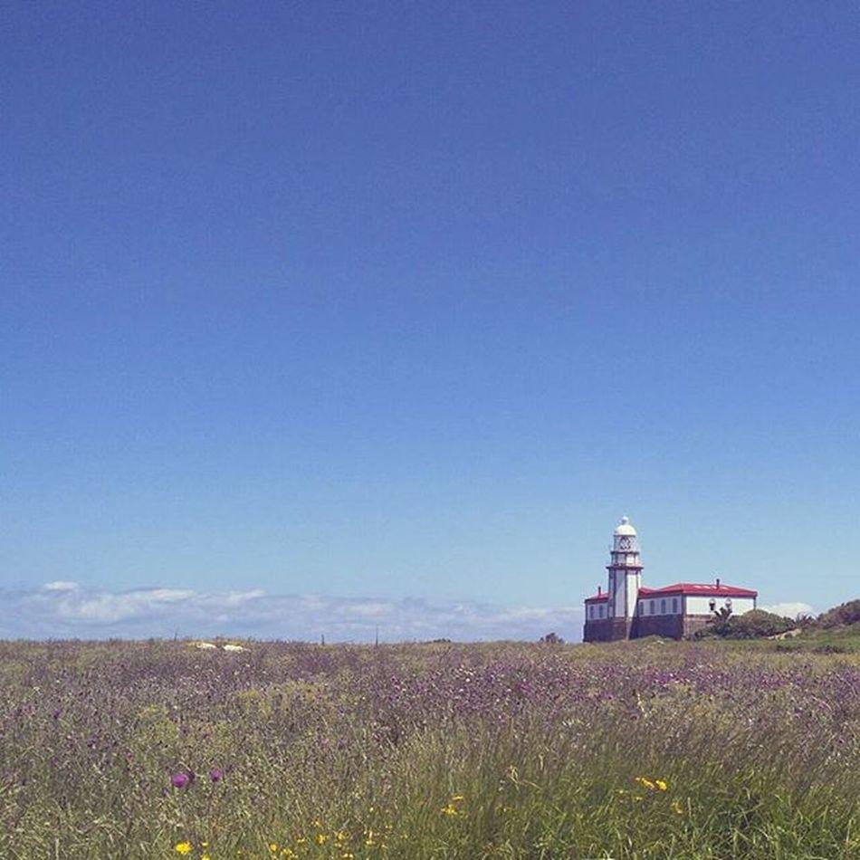 🌿🌅 Momentos en los que empiezas a extrañar ciertos lugares y compañeros 🍹⚓ Onsislands Islands Lighthouses Galifornia Galiciacalidade Riasbaixas