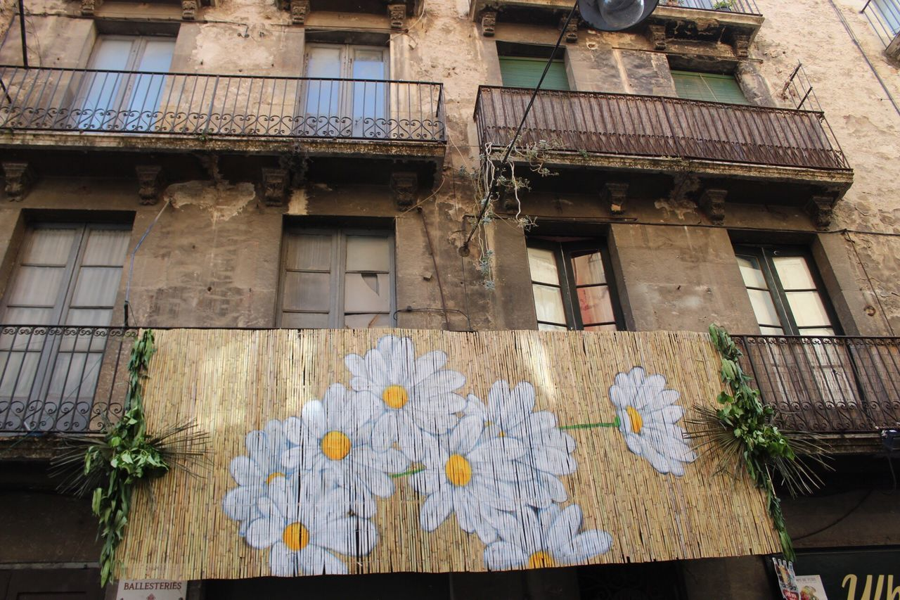 Flower Building Exterior Architecture Built Structure Day Window No People Outdoors Plant Nature Fragility Freshness The Architect - 2017 EyeEm Awards Girona Girona Temps De Flors 2017 Gironamenamora