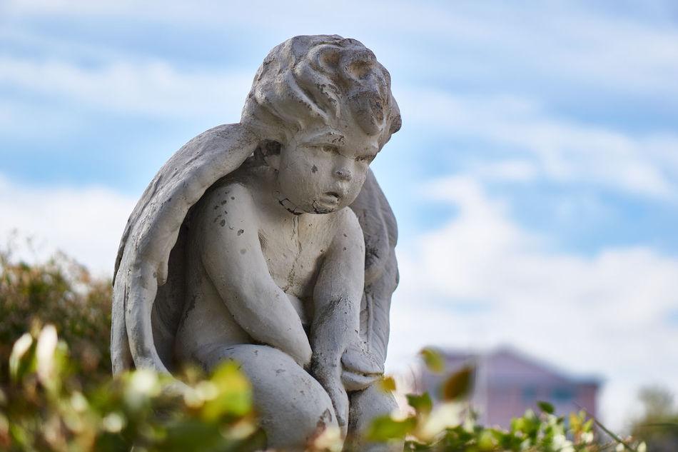Beautiful stock photos of angel, Angel, Art, Creativity, Day