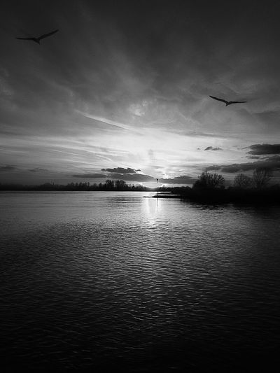 Black And White Photography Black Or White The Future Looks So Bright  Landscapes With WhiteWall