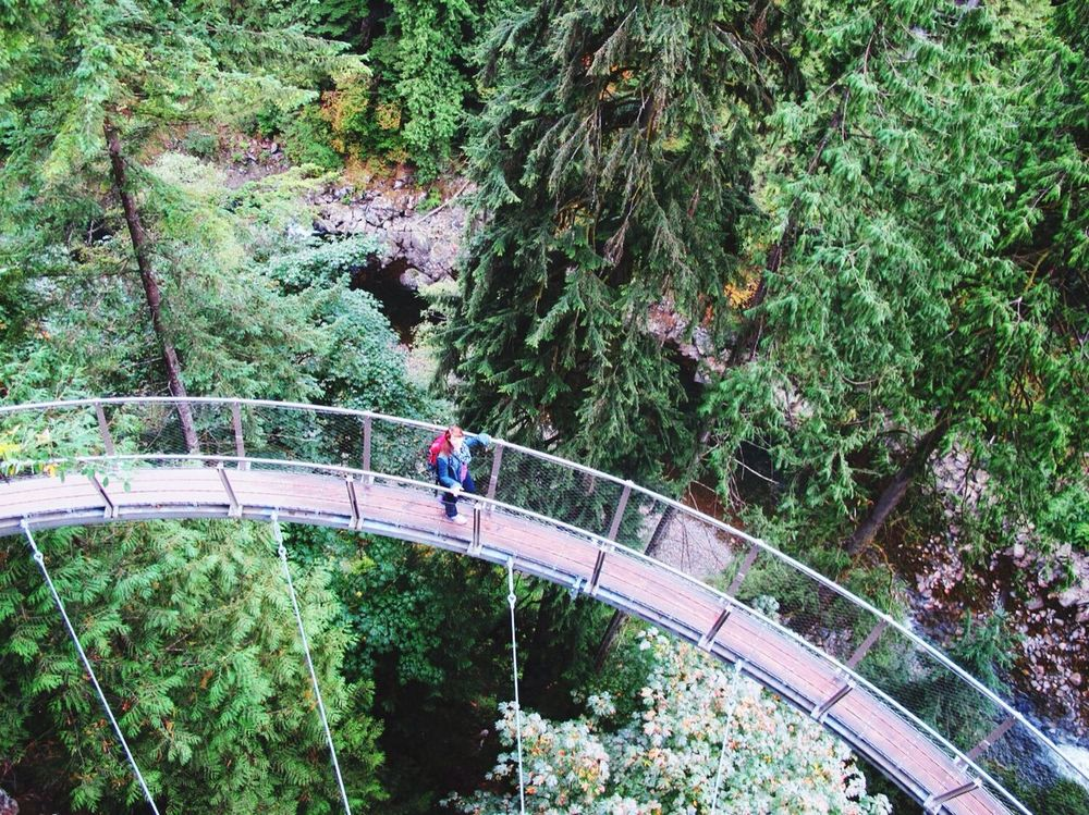 Vancouver Things to do | Capilano Suspension Bridge