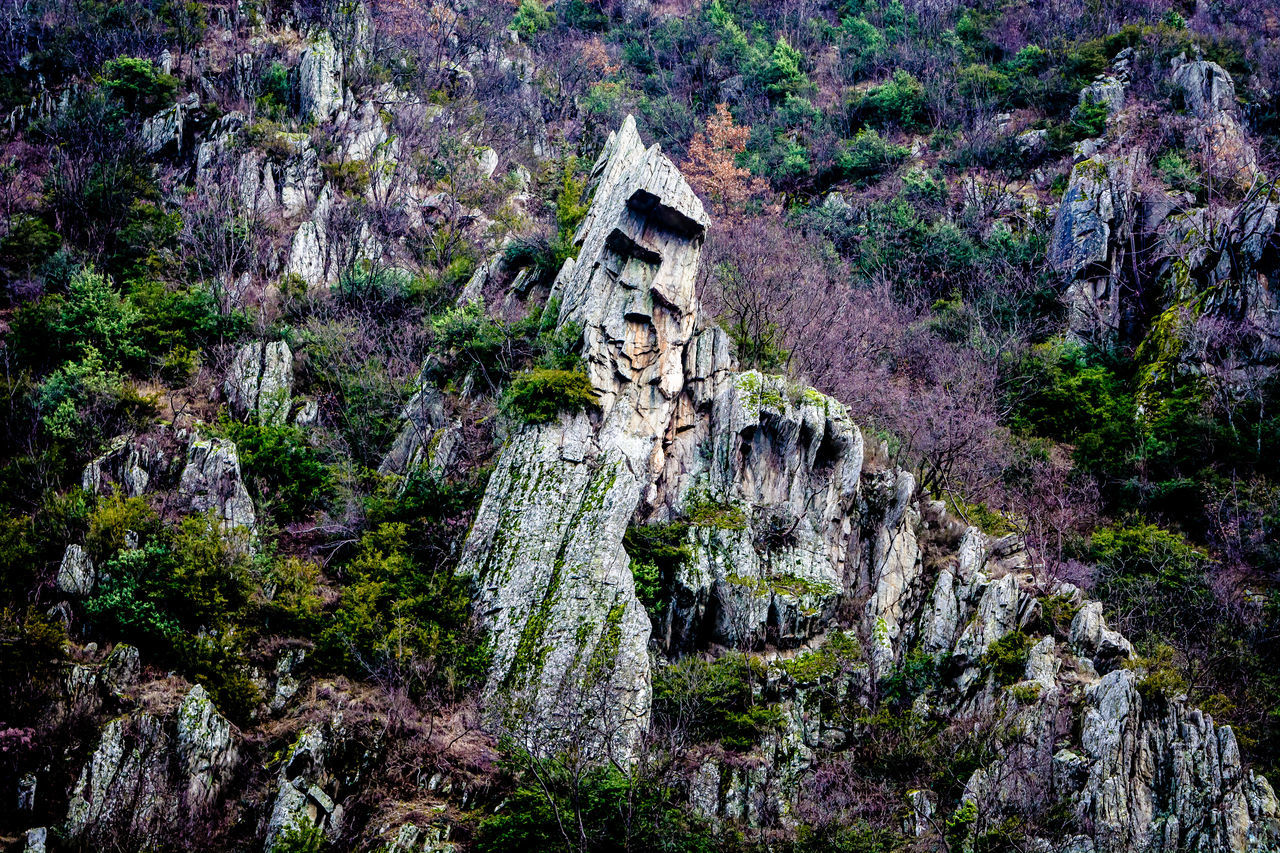 The triangular giant Canyon Cliff February Flowers Grass Green Macedonia Matka Mountain Nature Purple Rock Formation Rocks Shadows Skopje Spring Trees