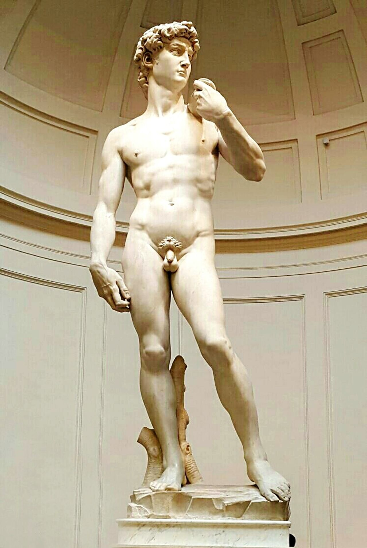Firenze Firenze Reminiscences David David David Di Michelangelo Michelangelo Statue