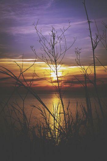 Sunset Sunset Silhouettes Beautiful Sunset Enjoying The Sunset Sunset