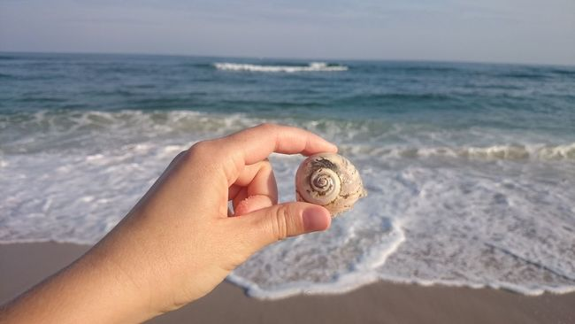 Sea Beach Horizon Over Water Sand Hand Hand Model Scenics Shore Tranquil Scene Ocean Seascape Seashells Beachphotography Vacations Holding Personal Perspective Tranquility Wave Summer Water Travel Destinations Tourism Seashell Scenics Shore Tranquil Scene Beauty In Nature
