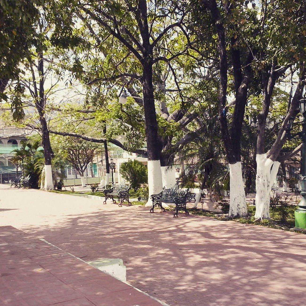 Bellísimo Parque Central de NuevaEsparta Launion Misviajes