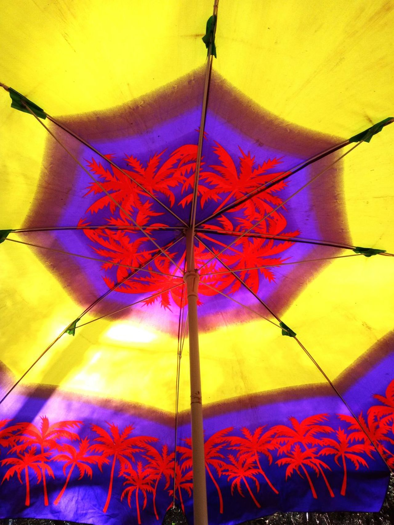 Multi Colored Cloud - Sky No People Day Tree Sky Close-up Nature Outdoors Standing Sunlight Umbrellas In The Sky Umbrella Art Umbrellas Act Decorations Umbrella☂☂