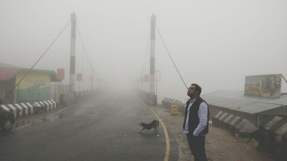 One Person Only Men Fog Nature Fog In The Trees Foggy Mountains Foggy Landscape Meghalayatourism Nature Photography Meghalaya India Meghalaya Meghalaya Northeast India Beauty In Nature Meghalaya Shillong Foggy Weather Foggy Morning Morning Bridge Photography