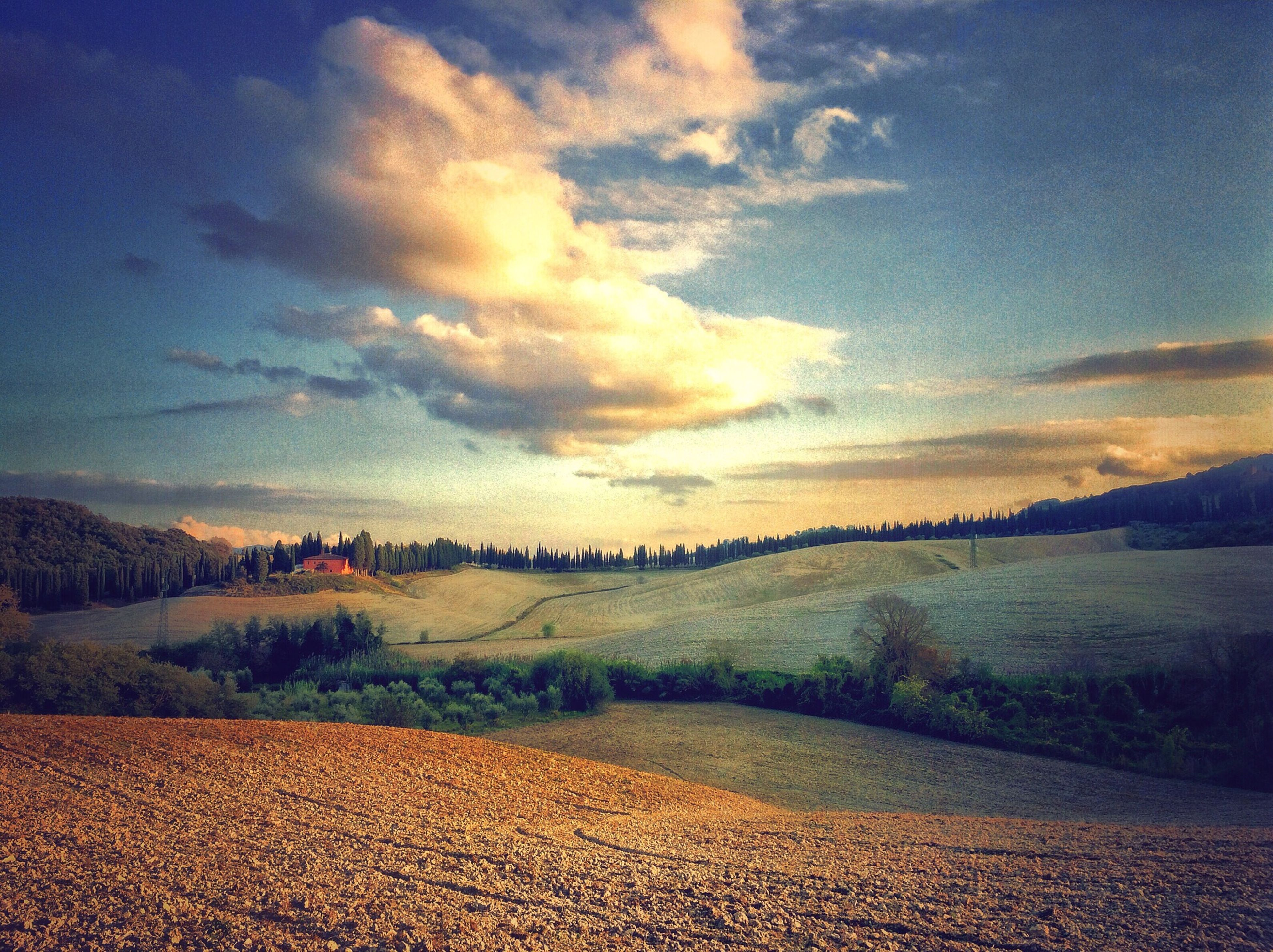 landscape, tranquil scene, sky, tranquility, scenics, beauty in nature, field, cloud - sky, nature, rural scene, agriculture, horizon over land, cloud, sunset, idyllic, cloudy, non-urban scene, remote, tree, outdoors
