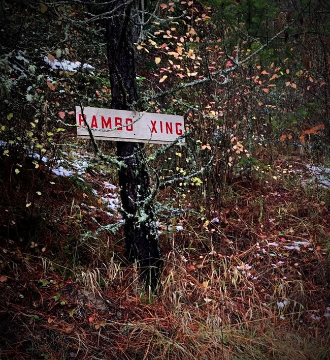 Warning sign Adventure Time Rambo Rambo Crossing everday emotion Sign On Tree In Woods Signage Signboard Warning Sign Road Crossing Hidden Gem