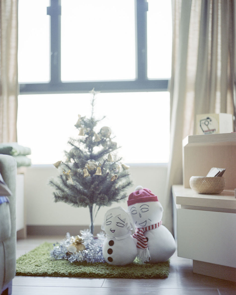 Beautiful stock photos of schneemann, window, christmas, indoors, christmas tree