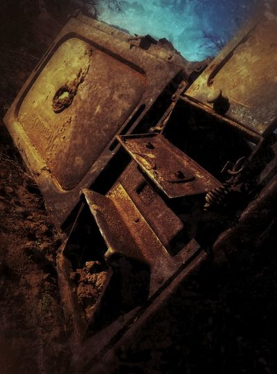 Rust Royal Snapping Artists Rsa_preciousjunk  Desert