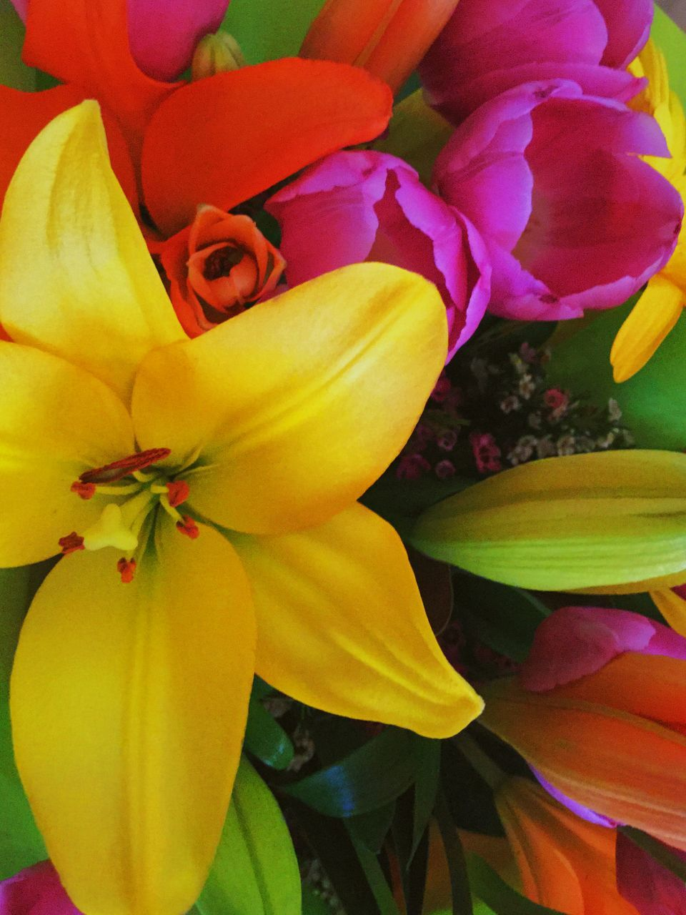 flower, petal, fragility, freshness, beauty in nature, flower head, nature, growth, no people, yellow, close-up, blooming, full frame, plant, day, backgrounds, leaf, outdoors, multi colored