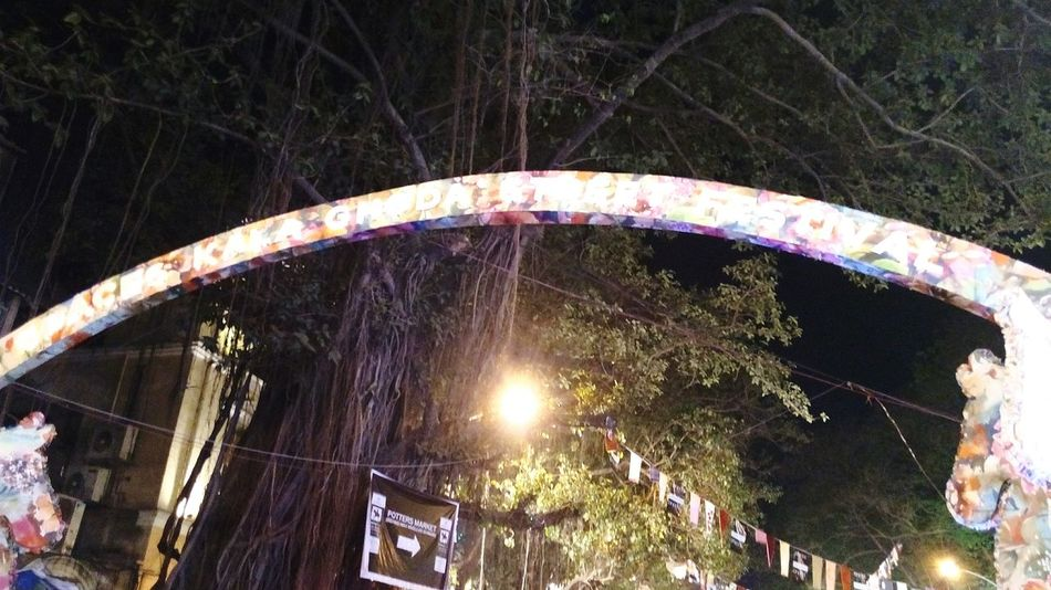 Tree Low Angle View Outdoors No People Illuminated Night Arts Culture And Entertainment Kalaghoda🐴 Art And Craft Kalaghodaartfestival Indian Culture  Famous Tourist Attractions Lighting Decoration Travel Tourism Low Angle View Celebration