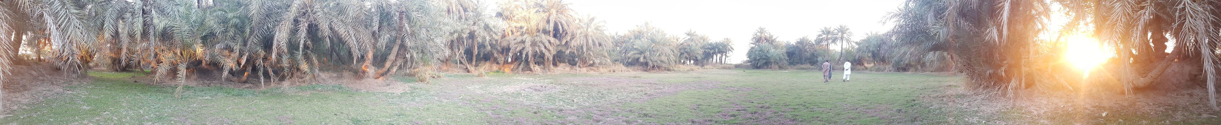 Around the west bank of Jehlum River Khushab 360 Panorama
