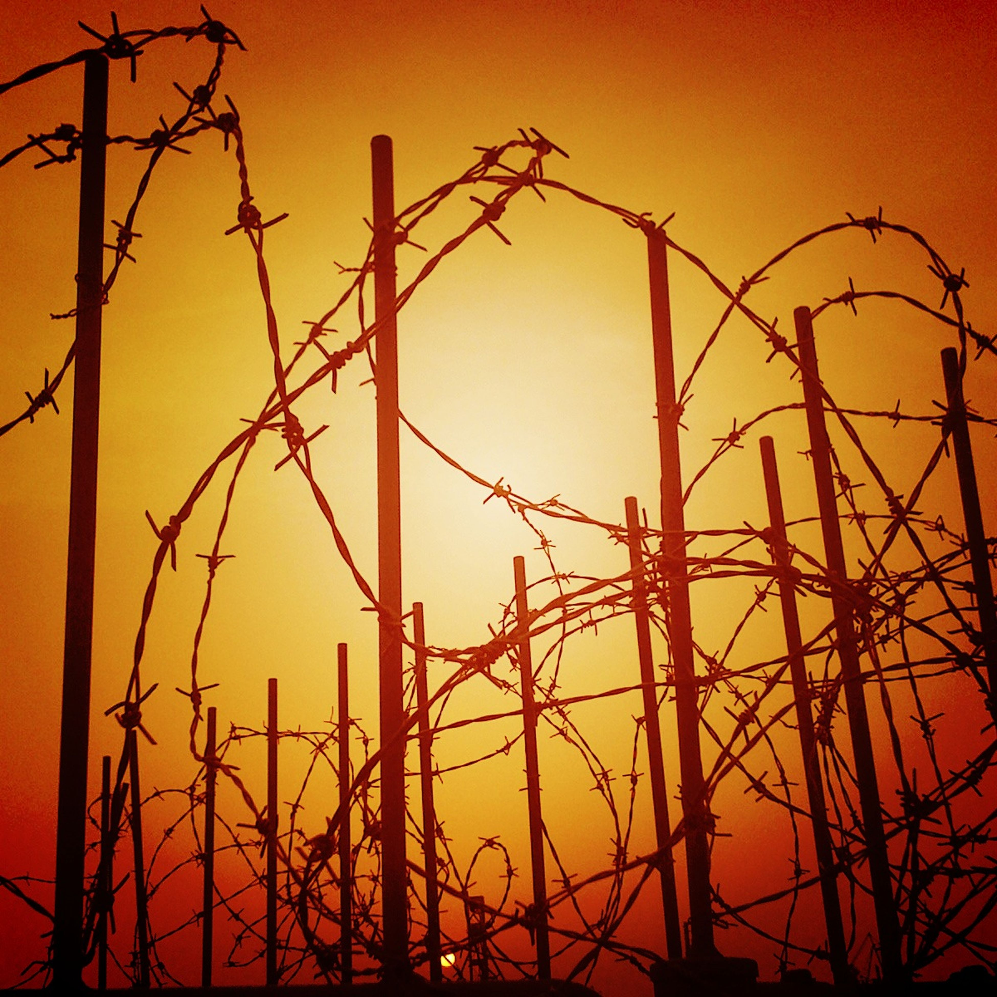 sunset, orange color, silhouette, metal, sky, electricity pylon, low angle view, safety, clear sky, protection, chainlink fence, electricity, connection, fence, power supply, no people, outdoors, nature, power line, metallic