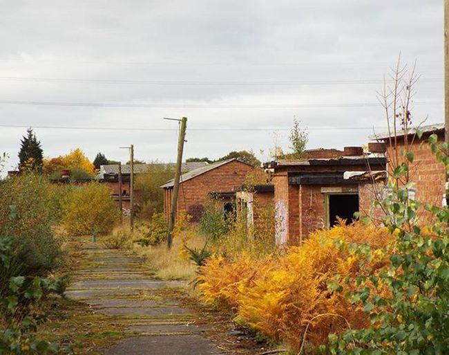 Abandoned Abandonedbuilding Abandonedmilitarybase Abandonedmilitary Abandoned_junkies Abandonment_issues Urbanexploration Urbanexplorer Urbex Urbex_rebels Militarybuilding Autumn Overgrown