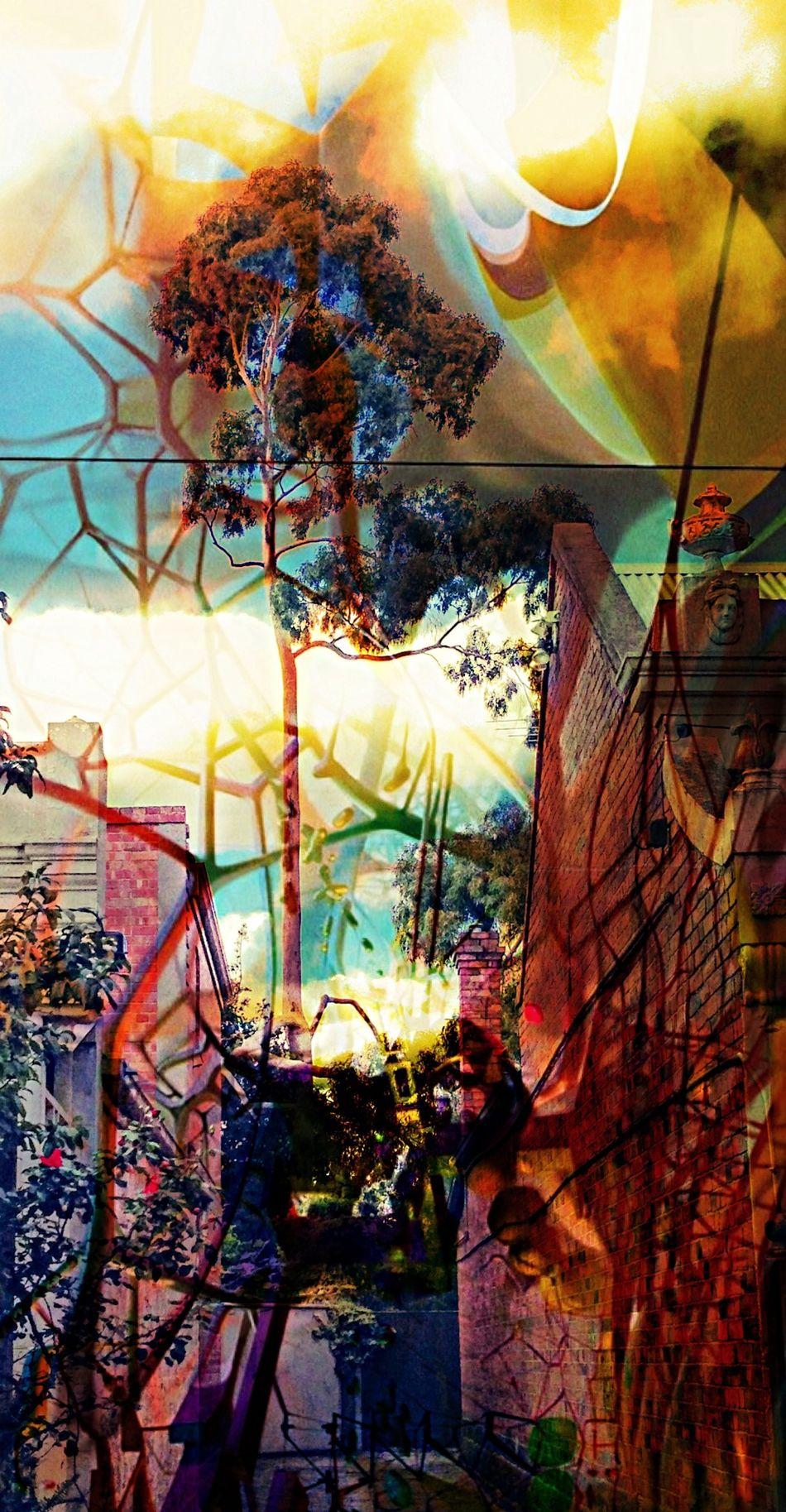 Futuristic Nature... Pantone Colors By GIZMON