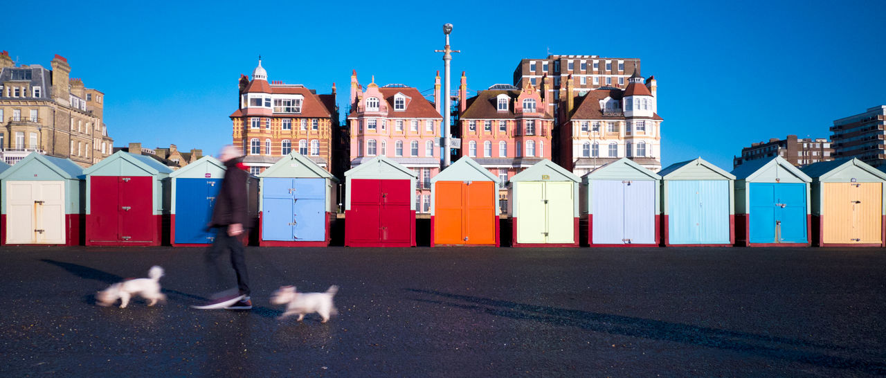 strolling on Brighton seafront Animal Animal Themes Architecture Beach Hut Beach Huts Brighton Brighton Beach Brighton Uk Building Exterior City Day Dog Dog Walker Dog Walking Full Length One Animal Outdoors Pets Promenade Seafront Sky Strolling Strolling Through The City Tower Travel Destinations The City Light