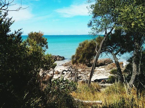 Still water on the bay