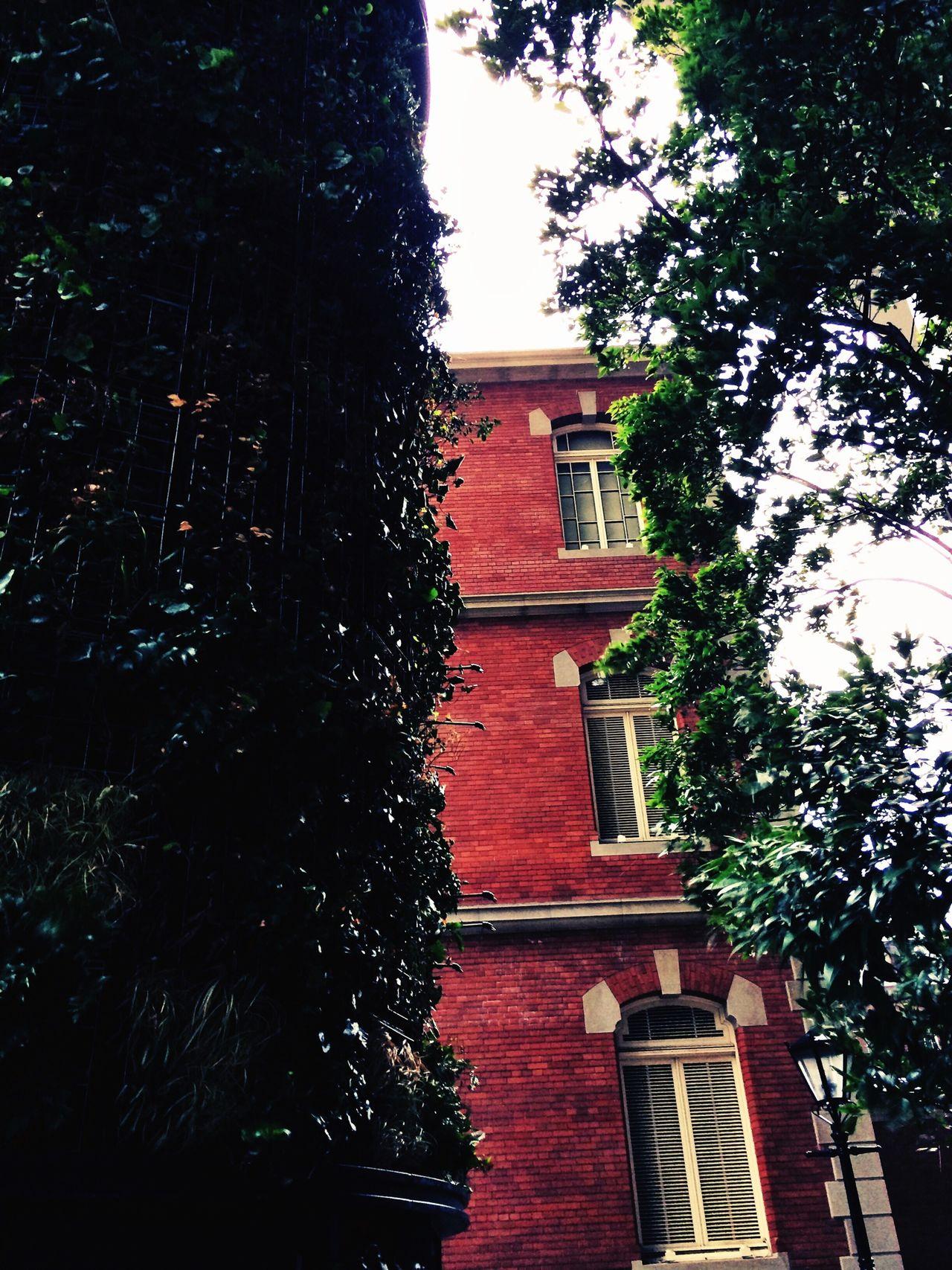 Brick Architecture Museum Trees