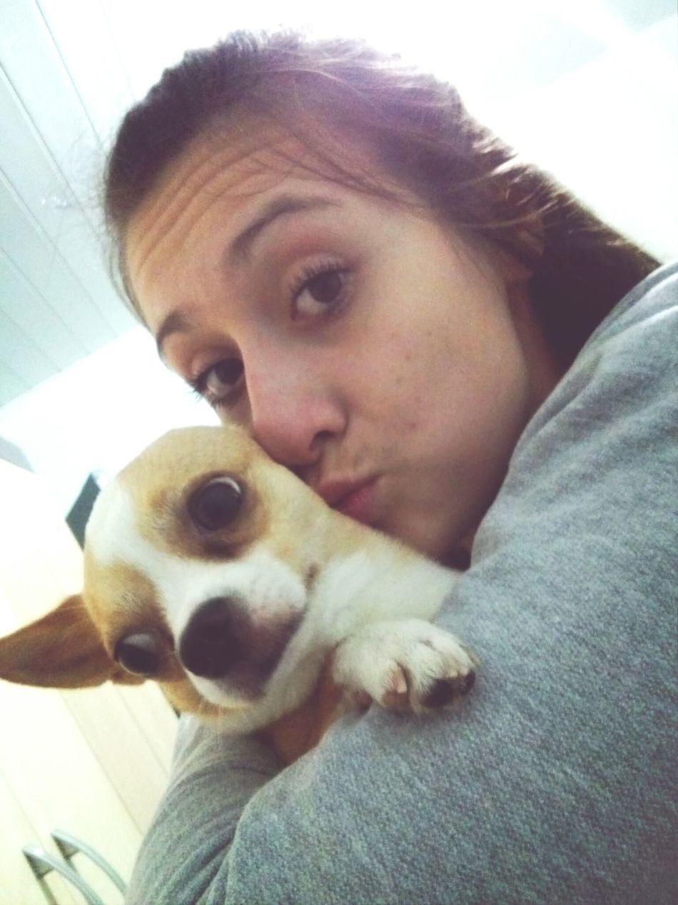 Neenii Love♡ My Life♡ Dog♡