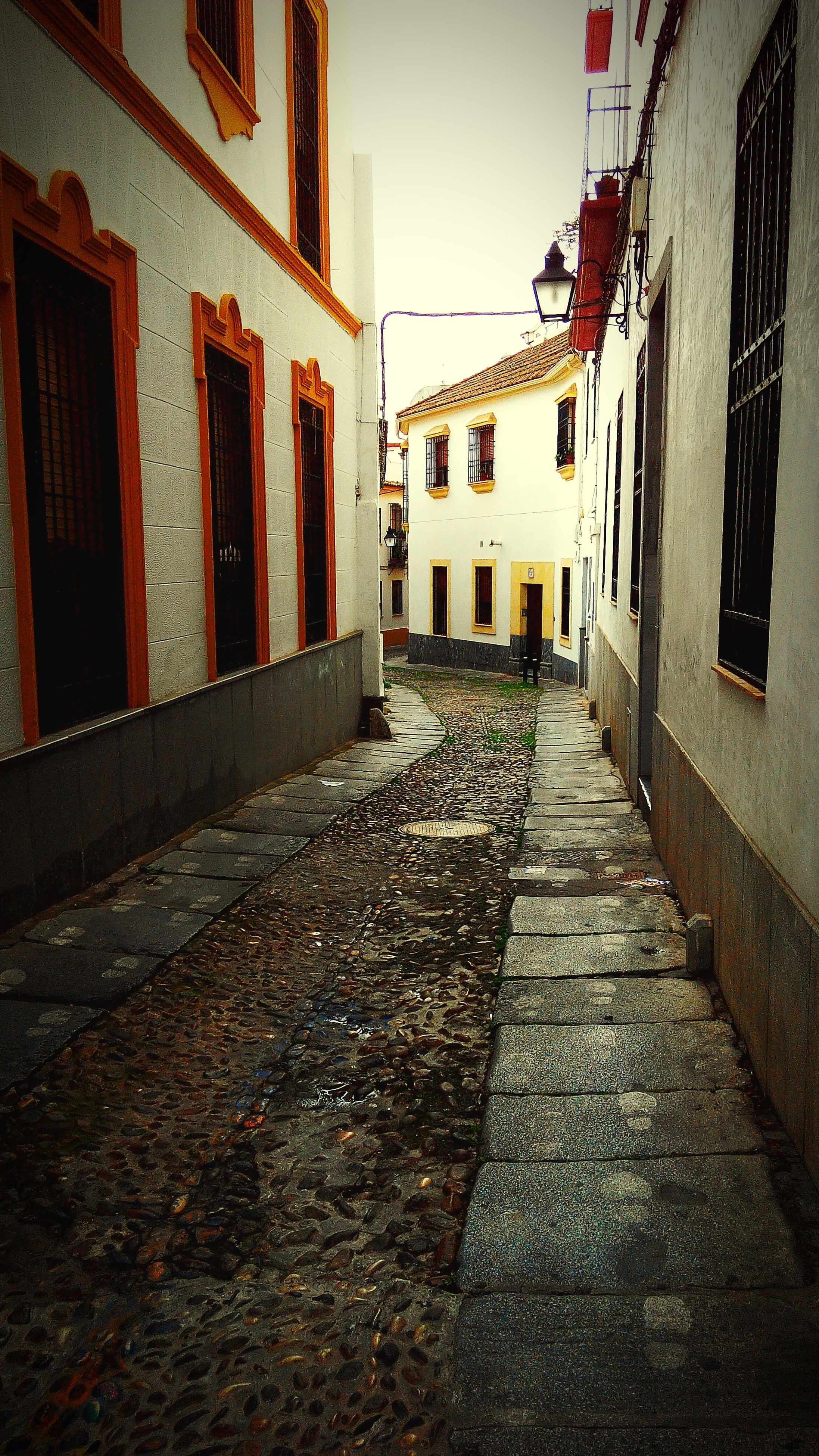 architecture, built structure, building exterior, the way forward, cobblestone, residential structure, residential building, diminishing perspective, street, building, house, alley, narrow, walkway, vanishing point, pathway, city, footpath, empty, outdoors