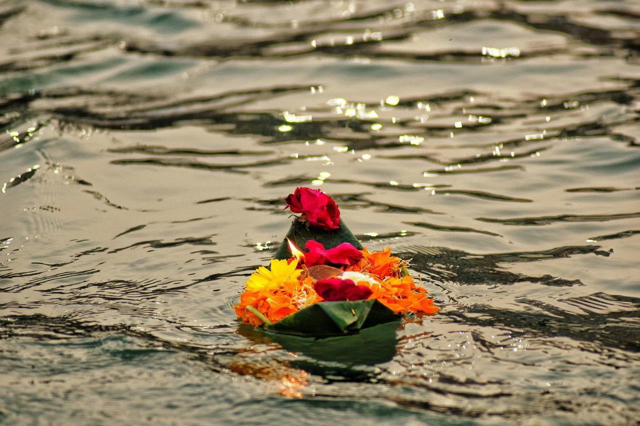 """Haridwar....during a special act...""""Arti"""" Water High Angle View Outdoors Nature Flower Beauty In Nature Day Real People Floating On Water Close-up Nature India Beauty In Nature Nightphotography People And Nature Flower Arrangement Multi Colored Joy And Enlightenment Indian Relaxing Holywater  Ganga River Haridwar,India"""