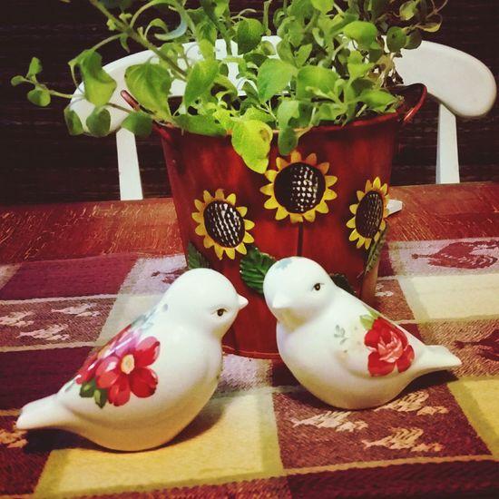 Salt And Pepper Put A Bird On It! Indoors  Animal Themes Fun Stuff! Gift Kissing Birds