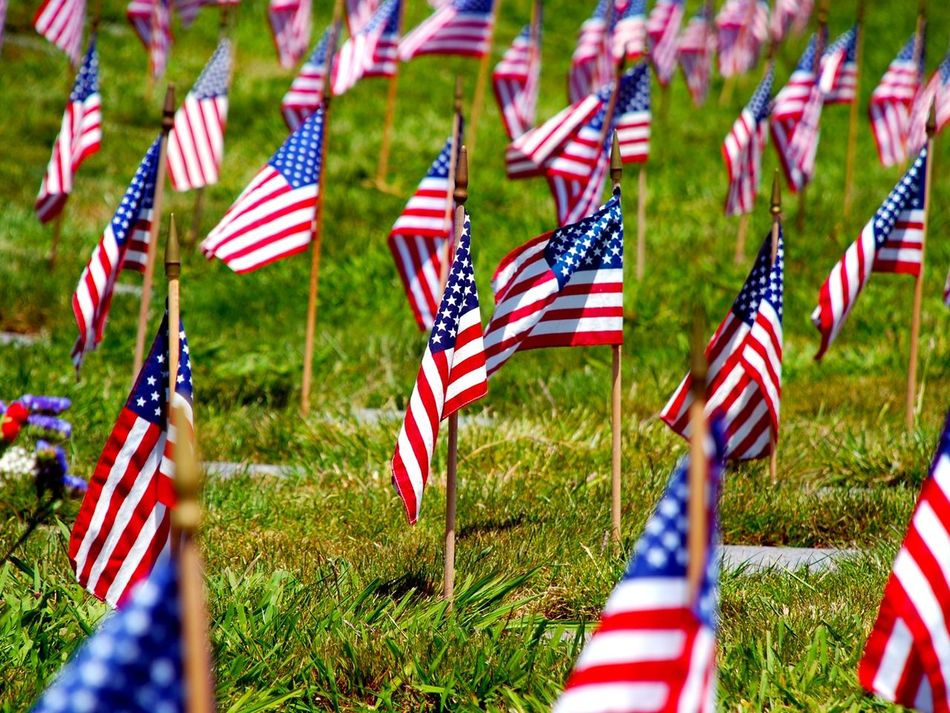 Beautiful stock photos of memorial day, Abundance, American Flag, Cemetery, Day