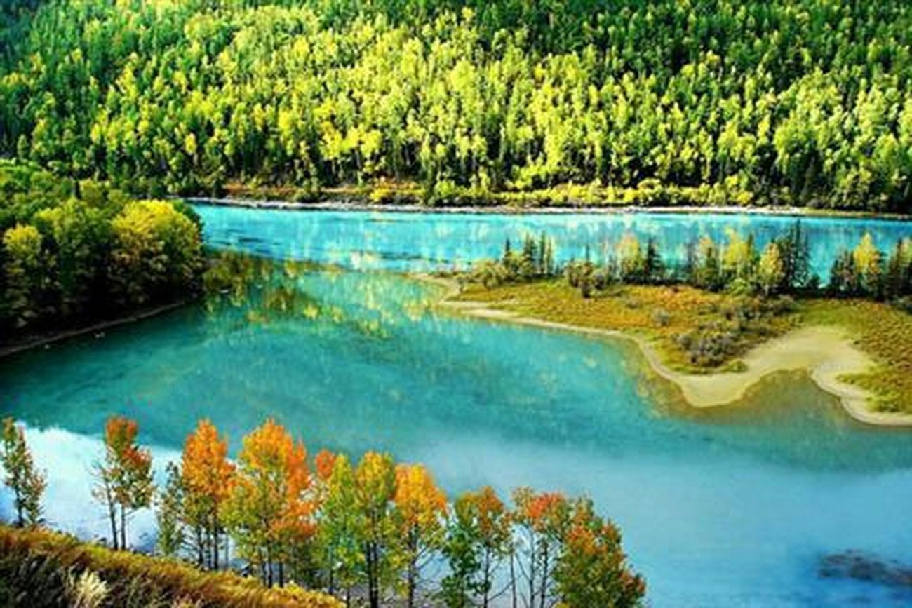 Hello World Taking Photos Summer Views My Love My Erthing Hanging Out EyeEm Gallery EyeEm Best Shots Nature Beautiful Nature Huggingatree