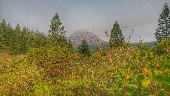 Climbed this gas cone last week!! Tranquil Scene Mountain Landscape Mt Shasta California Black Butte Hiking❤ Hikingadventures Springhill  Naturelovers HDR SCAPE California Hdr_Collection Landscape_photography