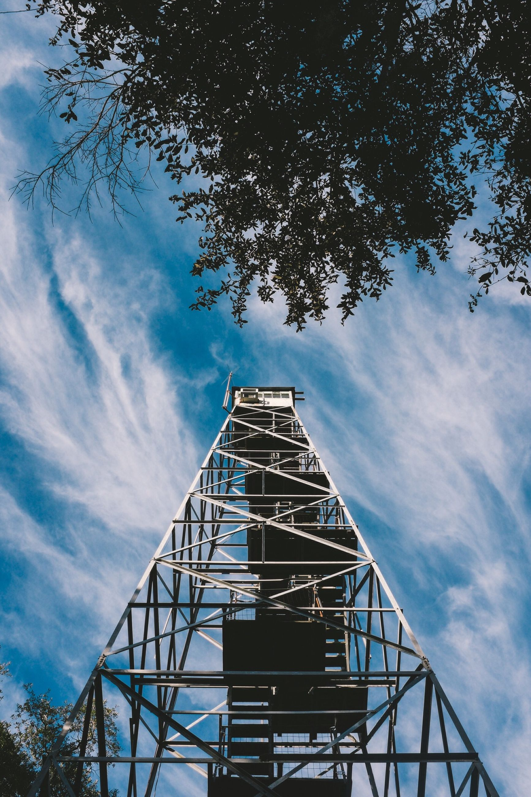 low angle view, sky, cloud - sky, built structure, metal, architecture, tree, cloudy, cloud, tall - high, metallic, tower, day, blue, outdoors, no people, grid, directly below, tall, building exterior