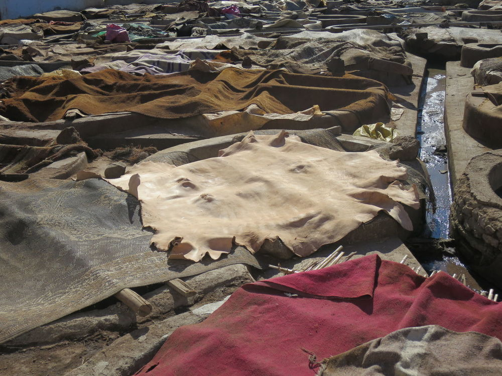 Close-up Colorful Colors Leather Leather Production Marrakech Marrakesch Morocco Tanner Tannery