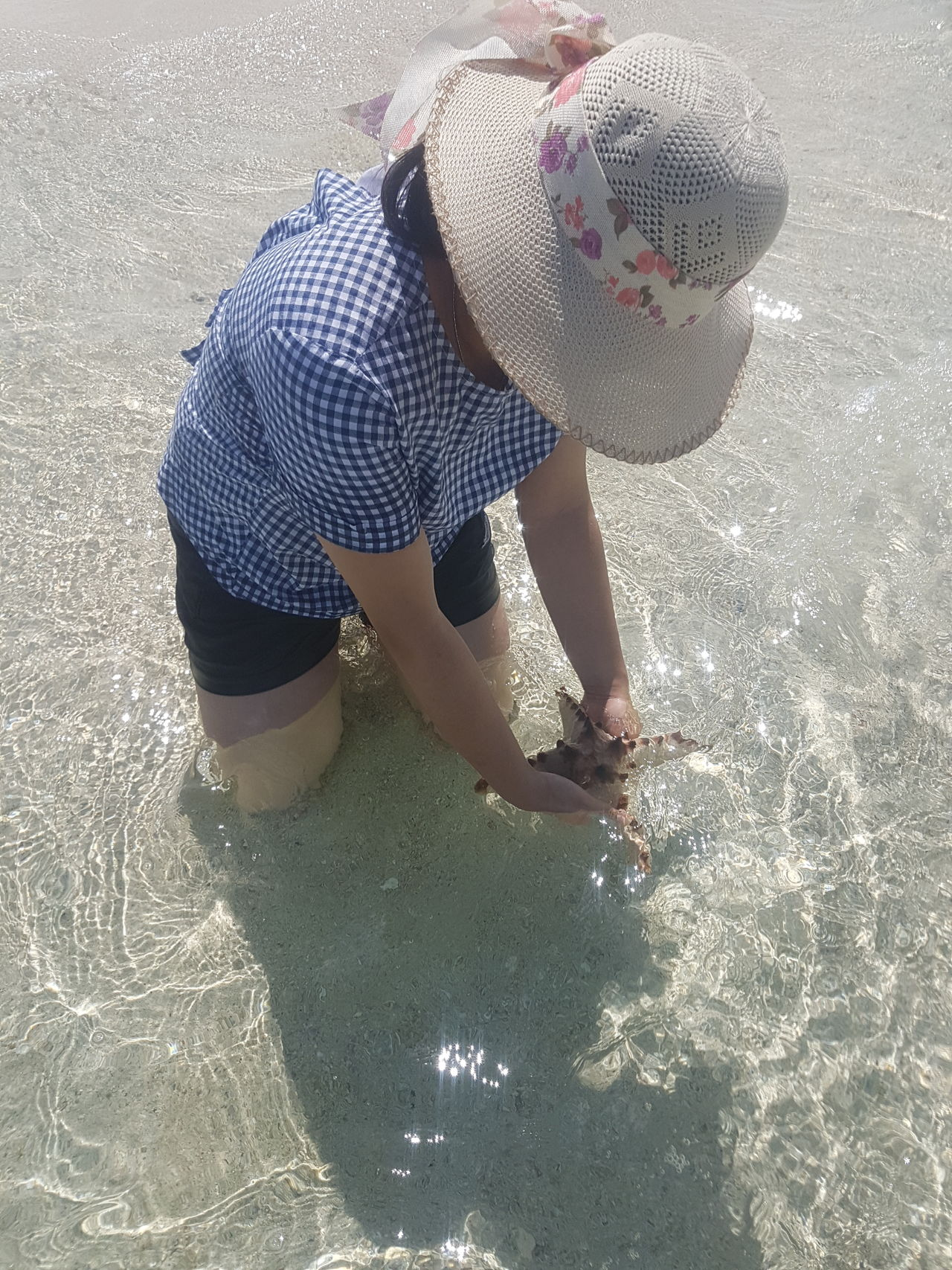 My Year My View One Person Real People Outdoors Looking Down Starfish  Starfish At Beach