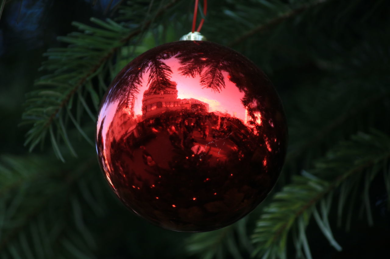 My Year My View Christmas Christmas Tree Christmas Decoration Christmas Ornament Red Hanging Celebration Tree Holiday - Event Tradition Bauble Christmas Lights No People Close-up Christmas Bauble Tree Topper Indoors  Night