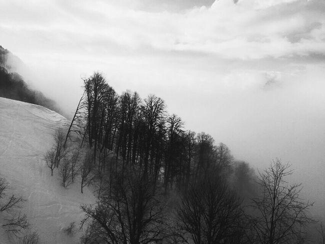 Sochi Gorkygorod Mountains Snow