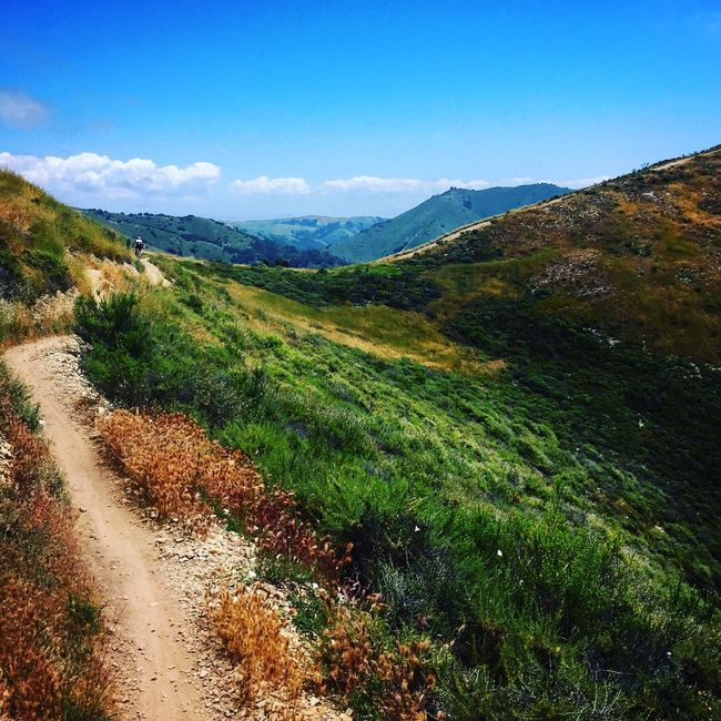 Canyon Singletrack Greenmountain Mountainbike