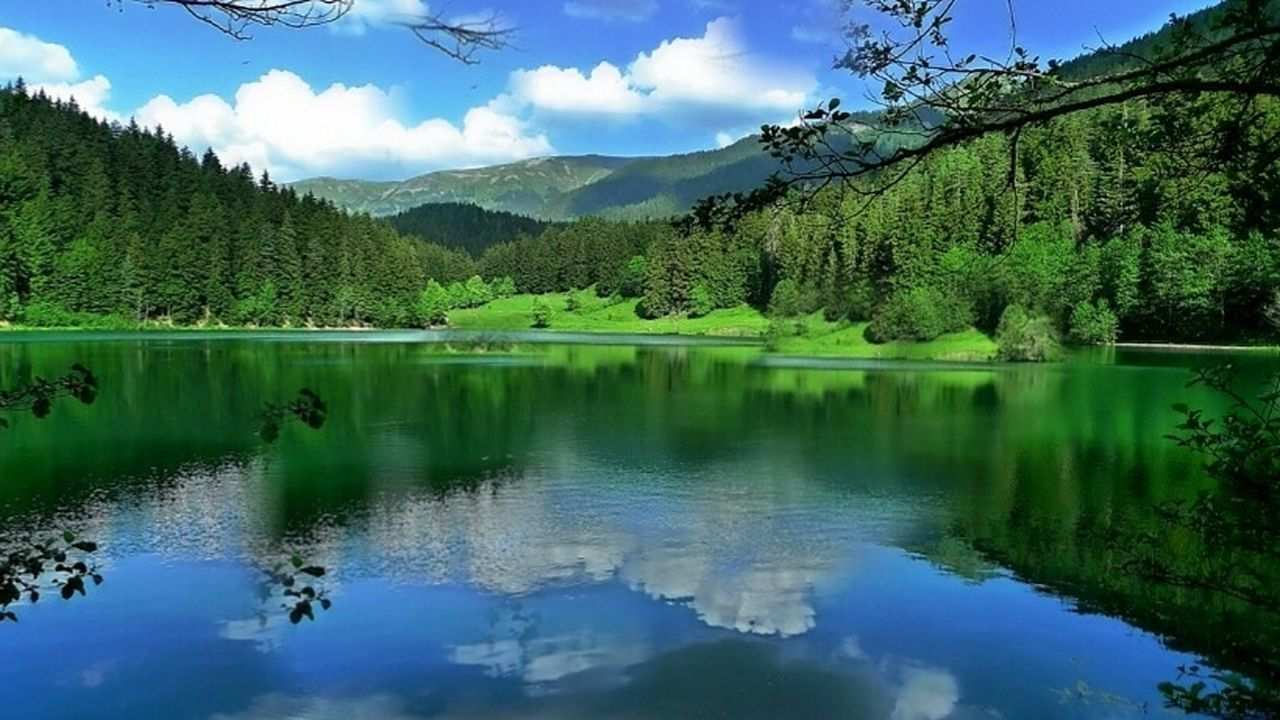 🍂 Şavşat Artvin Turkey Reflection Nature Tree Mountain Lake Blue Sky Landscape Green Color Scenics Idyllic Beauty In Nature Travel Destinations Outdoors No People Forest Tranquil Scene Water Cloud - Sky Day Transportation Nature Green Color Beauty In Nature Built Structure Adapted To The City