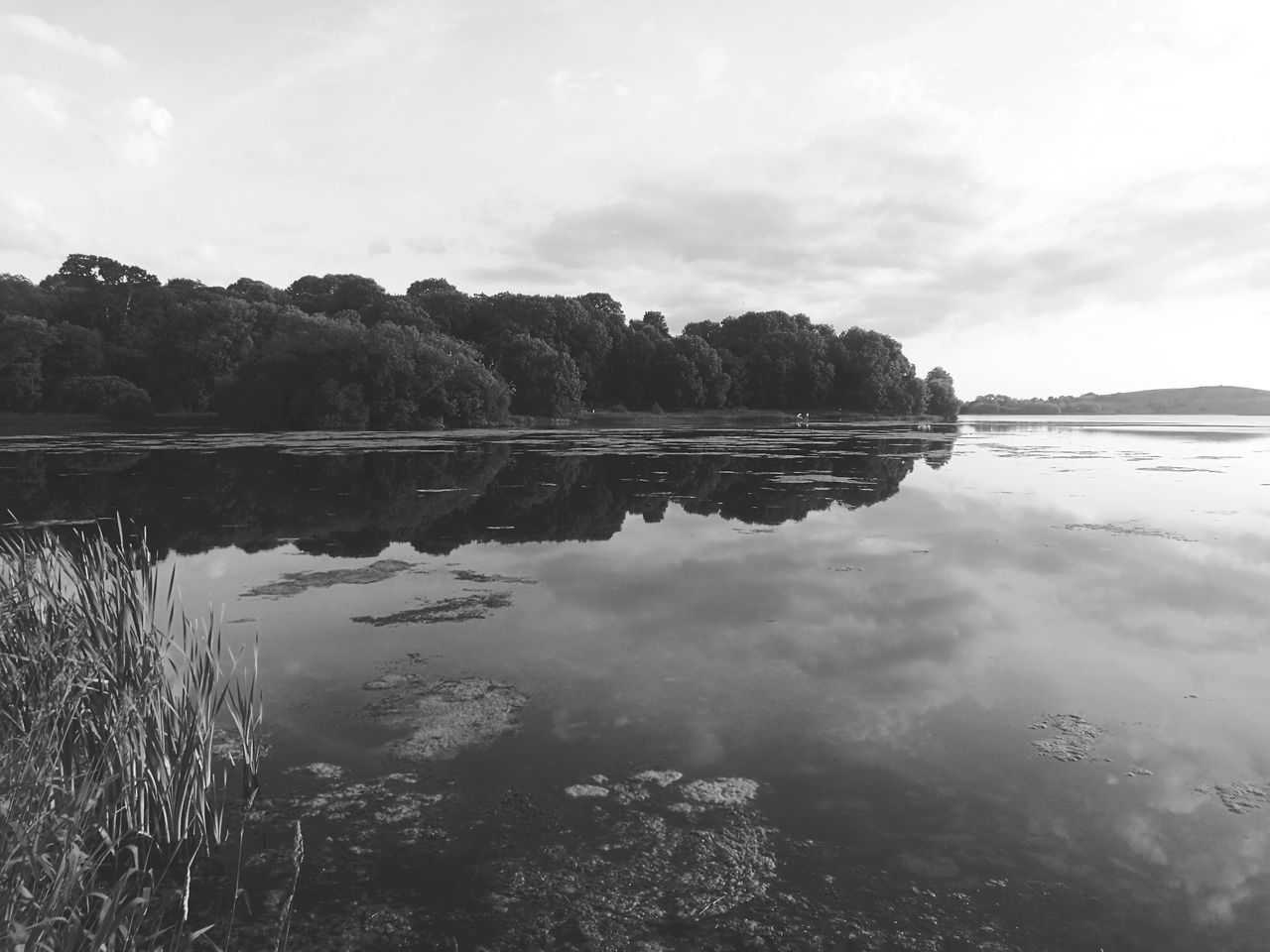 Reflection Water Lake Sky Tree Tranquility Outdoor Pursuit Nature Day Scenics Cloud - Sky Landscape Outdoors Beauty In Nature No People Black And White