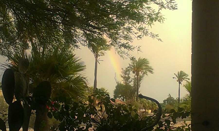Nature Rainbow Plants Patio View Outdoors Apache Junction The Great Outdoors With Adobe Still Life