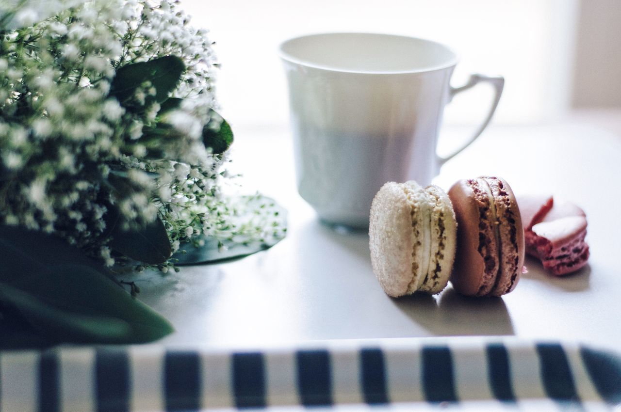 My Student Life is about balance. Balance between pushing my self to work hard and treating myself as often as I can. Balance Life At University Law Student Food And Drink Coffee Flowers Simple Joy Morning Scene Macarons Breakfast