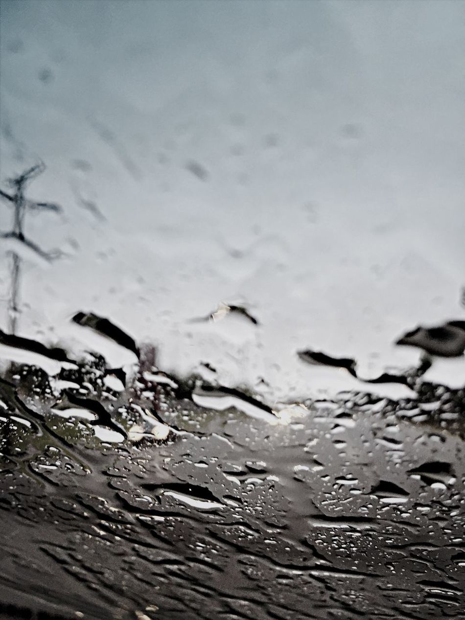 Beautiful stock photos of rain, Car, Close-Up, Day, Defocused
