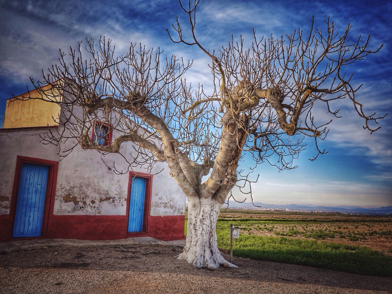 EyeEmNewHere Nature Beauty In Nature Nature_perfection Built Structure Building Exterior Cottage Scène Rurale Tree Bare Tree Branch Tranquility Tranquil Scene