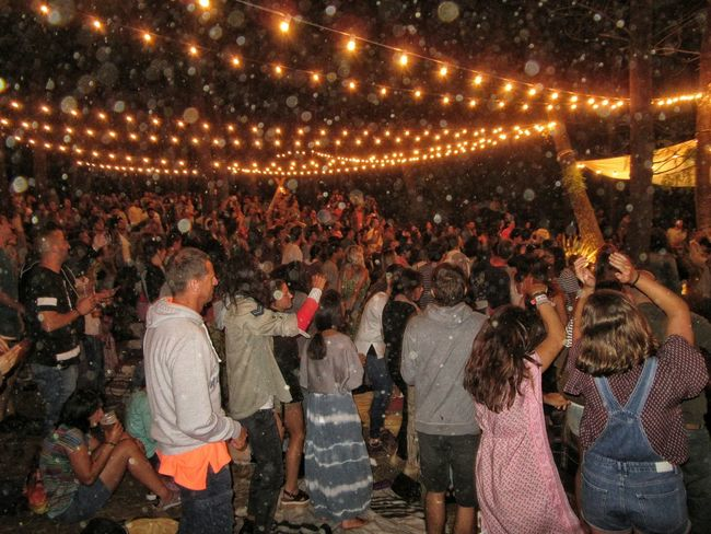Ewan-Fest 2016, in the pine forest drizzling Abundance Casual Clothing Celebration Concert Photography Crowd Cultures Event Ewan Ewan Fest Festival Season Illuminated Large Group Of People Leisure Activity Lifestyles Lumicar Men Mixed Age Range Music Festival Night Person Tradition Drizzling